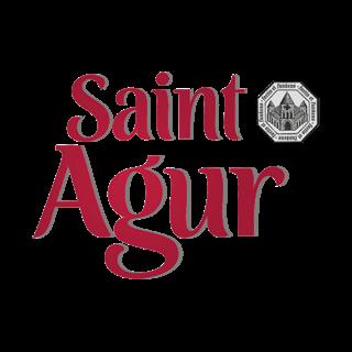 Saint Agur : recettes, bon de réduction et nouveautés