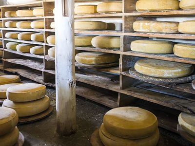 Le fromage, un aliment qui n'a rien à cacher