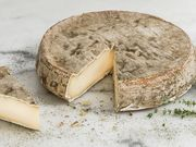 Fromage : Saint-Nectaire AOP