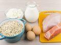 Les protéines : les briques de l'organisme