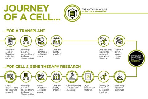 2436_CGT_Journey_of_a_Cell_infographic_v5