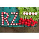 Бодіам RZ F1 Фото товара view-5 S