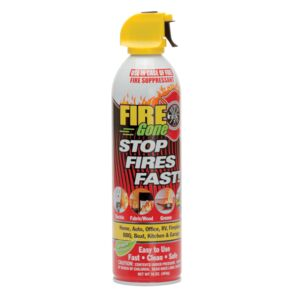 FIRE EXTINGUISHER S.F.F FIRE GONE