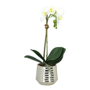 ARTIFICIAL ORCHID WHITE S IN GOLD VASE
