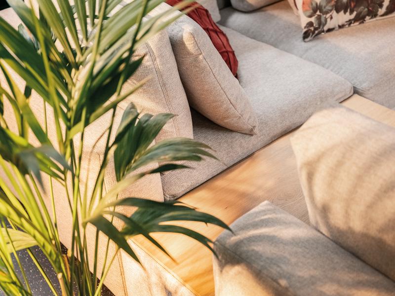 Details von Sofa Zarik mit Pflanzen