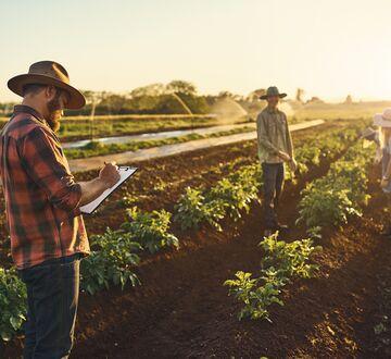 Bilde av bønder på et jorde
