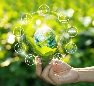 Environment and Sustainable Development  image