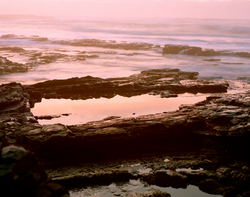 MORGAN BAY Documentary