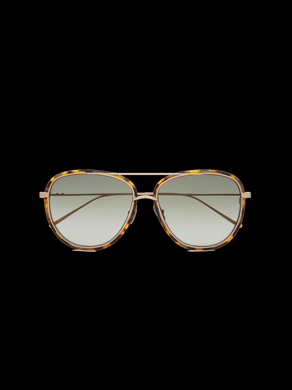 Men Pasadena - Tortoiseshell Acetate Aviator Sunglasses