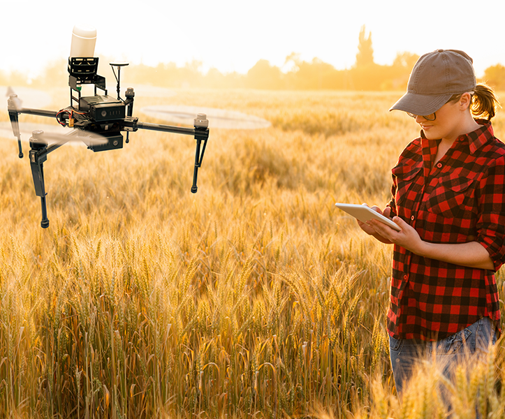 Woman farmer controls drone sprayer with a tablet. Smart farming and precision agriculture
