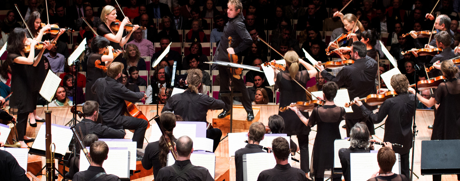 Australian chamber orchestra for Chambre orchestra