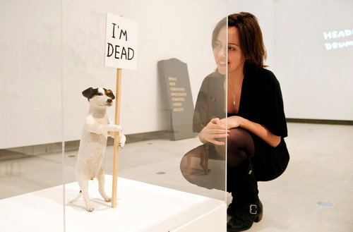 Visitor looking at Dog holding sign 'I'm Dead' by David Shrigley at Hayward Gallery
