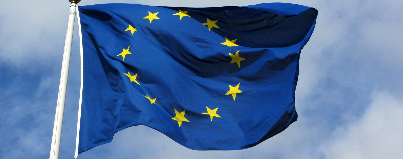 Image of European Flag