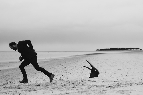 Man on a Beach with Penguin Head