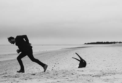 Man on a Beach with Penguin Head