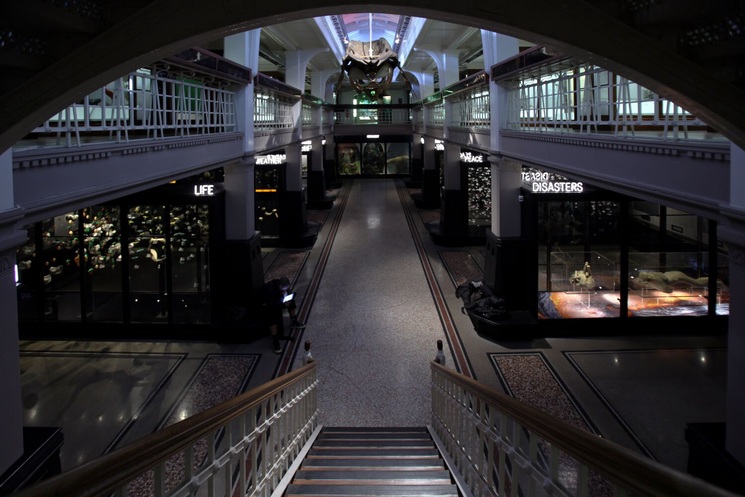 The Manchester Museum Living Gallery
